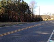 7970 Hwy 11 Unit 2.5 acres, Springville image