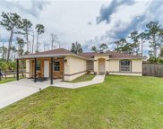 1320 Dove Tree St, Naples image