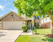 4528 Lacebark Lane, Fort Worth image