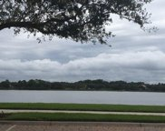 213 Evergrene Parkway, Palm Beach Gardens image