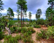 64 Forest Trail, Pine image