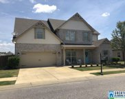 13028 Olmsted Cir, Mccalla image