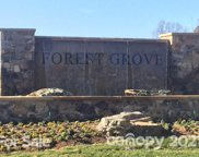 1317 Rainier  Drive, Fort Mill image