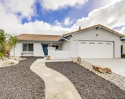 10169 Tres Lagos Ct, Spring Valley image