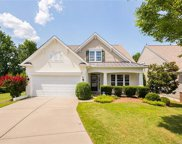 12048  Dunipace Court, Indian Land image