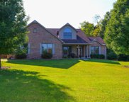 4516 Concord Meadow  Lane, Williamsburg Twp image