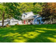5252 MT BRYNION  RD, Kelso image