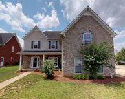 2037 Fiona Way, Spring Hill image