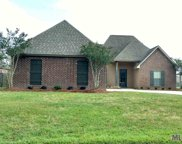 15011 Cross Creek Blvd, Walker image
