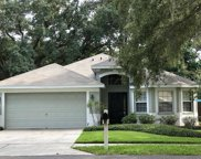 4640 Dunnie Drive, Tampa image
