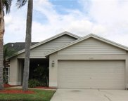 11417 Whispering Hollow Drive, Tampa image