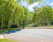 Peters Creek Court, Simpsonville image