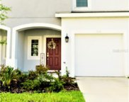 7110 Summer Holly Place, Riverview image