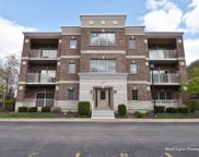 403 W Pierce Road Unit #201, Itasca image