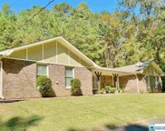 8132 Hill Rd, Pinson image