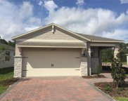 17334 Blazing Star Circle, Clermont image