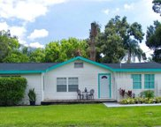 1308 W Arctic Street, Tampa image