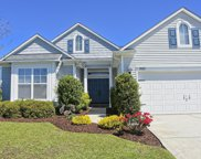 982 Meadowlands Trail, Calabash image