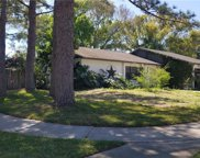 4702 Country Hills Drive, Tampa image