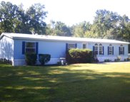 428 SW CONESTOGA WAY, Fort White image