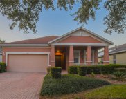 105 Flame Vine Way, Groveland image