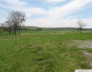 8256 Old Railroad Bed Road, Toney image