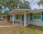 1714 INDIAN WOODS DR, Neptune Beach image