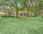 308 CHICASAW CT, St Johns image