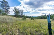 22244 County Road 126, Pine image