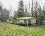 18932 296th Place NE, Duvall image