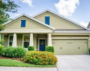 5107 Sanderling Ridge Drive, Lithia image