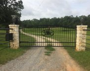 14741 County Road 471, Tyler image