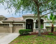 6615 Thornton Palms Drive, Tampa image
