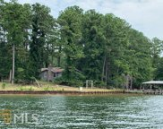227 Chicory, Milledgeville image