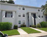 7132 Waterside Drive Unit 31202, Tampa image