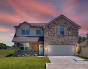 930 Golden Willow, Conroe image