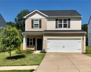 8423 Paw Valley  Lane, Charlotte image