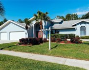 3780 Windber Boulevard, Palm Harbor image