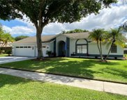 4018 Belmoor Drive, Palm Harbor image