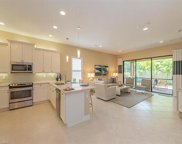 13383 Silktail Dr, Naples image