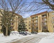 6400 W Belle Plaine Avenue Unit #509, Chicago image