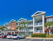 1107 Louise Costin Way Unit 1207, Murrells Inlet image