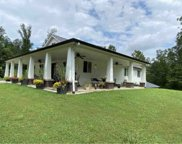 2111 Peach Creek Rd, Mc Ewen image