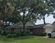 678 Mount Gilead Place Dr., Murrells Inlet image
