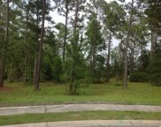 1000 Wigeon Dr., Conway image