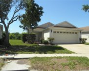 11231 Summer Star Drive, Riverview image