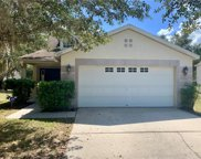 14915 Stag Creek Circle, Lutz image