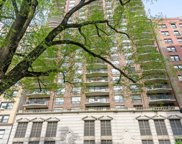 1250 N Dearborn Parkway Unit #5B, Chicago image