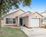 14905 Stag Woods Circle, Lutz image