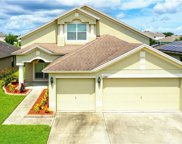 11521 Tangle Creek Boulevard, Gibsonton image